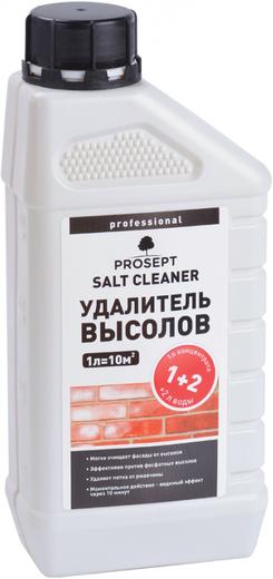 Просепт Salt Cleaner удалитель высолов (1 л)
