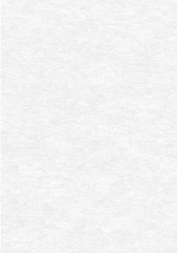 Erismann Elegance 4538-5 обои виниловые на флизелиновой основе 4538-5