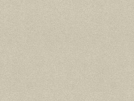 Rasch Chatelaine II 955736 обои виниловые на флизелиновой основе 955736