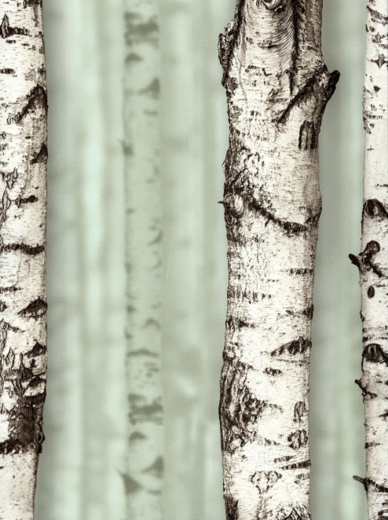 Andrea Rossi Sicily 54198-3 обои виниловые на флизелиновой основе 54198-3