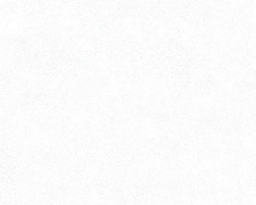 AS Creation Bude 2.0 36206-6 обои виниловые на флизелиновой основе