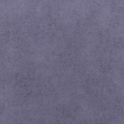 Rasch Vincenza 467253 обои виниловые на флизелиновой основе