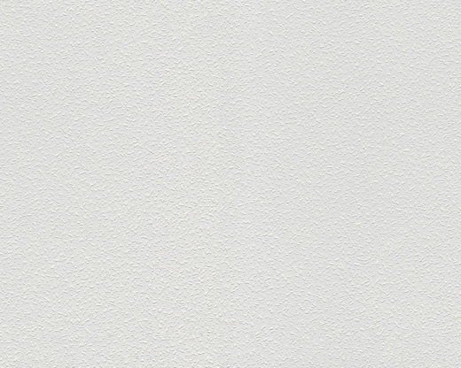 AS Creation Meistervlies 1041-13 обои виниловые на флизелиновой основе 1041-13