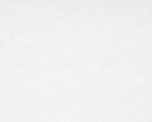 AS Creation Meistervlies 2000-13 обои виниловые на флизелиновой основе