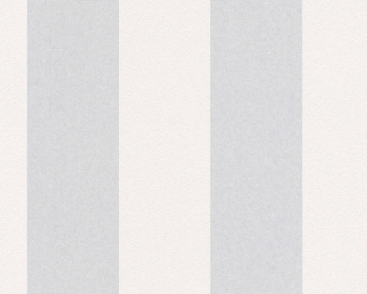 AS Creation Meistervlies 2475-13 обои виниловые на флизелиновой основе