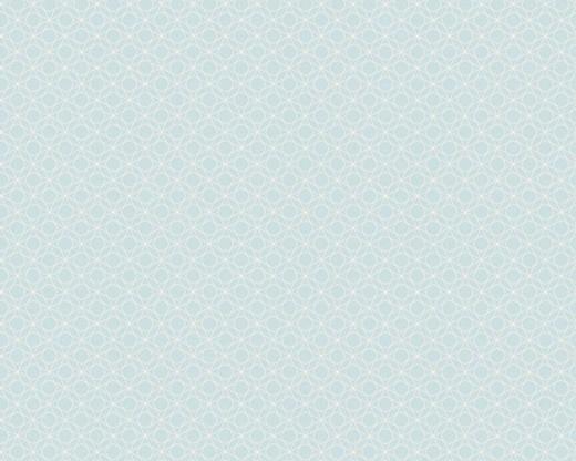 AS Creation Bjorn 351172 обои виниловые на флизелиновой основе 351172