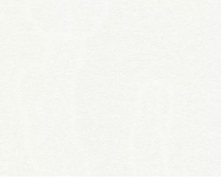 AS Creation Black & White 4 3250-13 обои виниловые на флизелиновой основе 3250-13