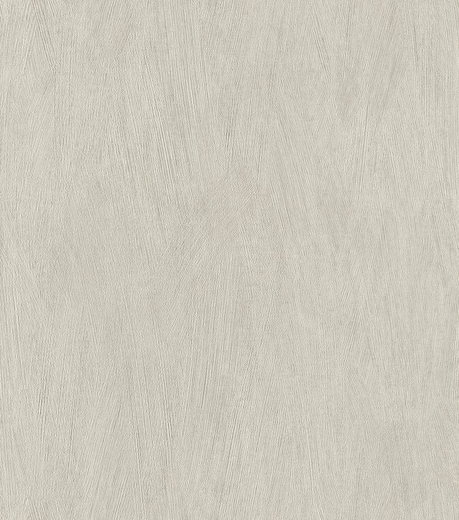Rasch Rock n Rolle 540833 обои виниловые на флизелиновой основе 540833