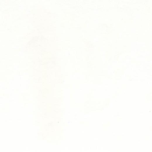 Авангард White СтФ 03085 флизелин ремонтный 03085
