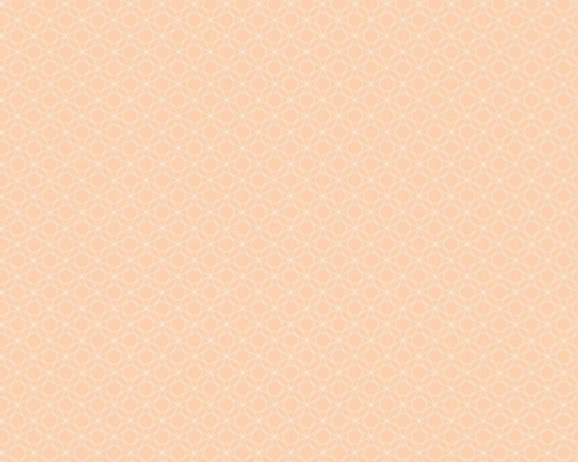AS Creation Bjorn 351171 обои виниловые на флизелиновой основе 351171