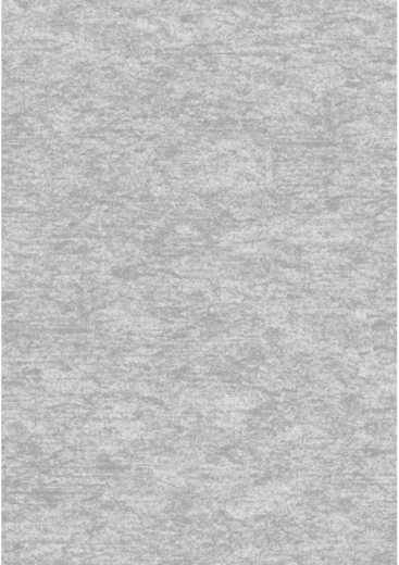 Erismann Elegance 4538-8 обои виниловые на флизелиновой основе 4538-8