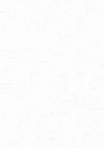 Erismann Elegance 4562-2 обои виниловые на флизелиновой основе 4562-2