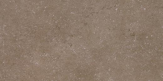 Kerama Marazzi Дайсен Дайсен Коричневый Обрезной SG211400R керамогранит напольный (300 мм*600 мм)
