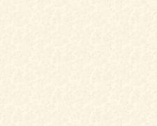 AS Creation April 347954 обои виниловые на флизелиновой основе