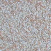 Bioplast 8613 жидкие обои