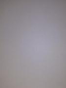 Витрулан VPP 160 Аква малярный стеклохолст пигментированный с клеевым слоем