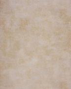 Casadeco Palazzo 26901229 обои виниловые на флизелиновой основе