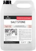 Pro-Brite Salt Stone моющий концентрат против высолов на фасадах