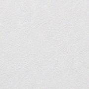 Wellton WP180 малярный стеклохолст грунтованный