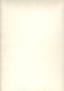 Авангард White СтФ 02065 флизелин ремонтный