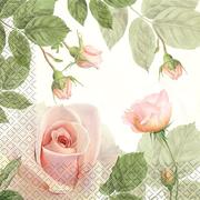 Мягкий Знак Мягкий Знак Gratias Утренняя Роза бумажные салфетки
