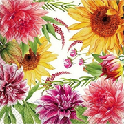 Мягкий Знак Мягкий Знак Gratias Цветение в Саду бумажные салфетки