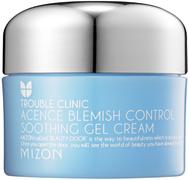 Mizon Acence Blemish Control Soothing Gel Cream гель-крем комплексный для проблемной кожи лица