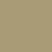 Paradyz Gamma/Gammo Gamma Karmelowa Sciana Mat. плитка настенная (198 мм*198 мм)