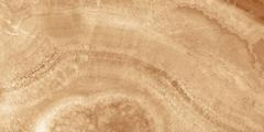 Laparet Prime Prime Оранжевая 34027 плитка настенная (250 мм*500 мм)